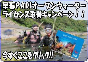 早春PADIOWCカード取得キャンペーン