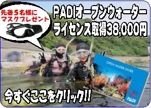 ダイブショップサンライズ38000円