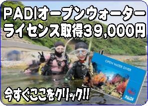 初夏10名限定39000円OW取得