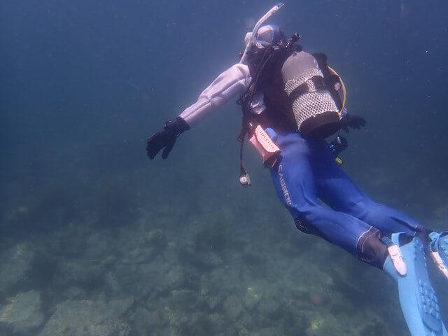 青海島 ダイビング