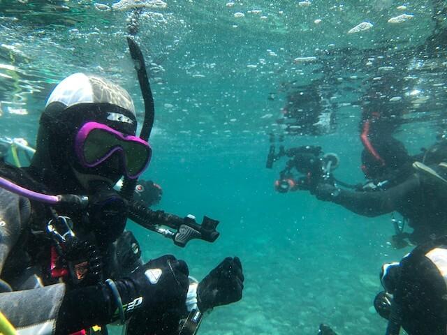 浮遊系ダイビング