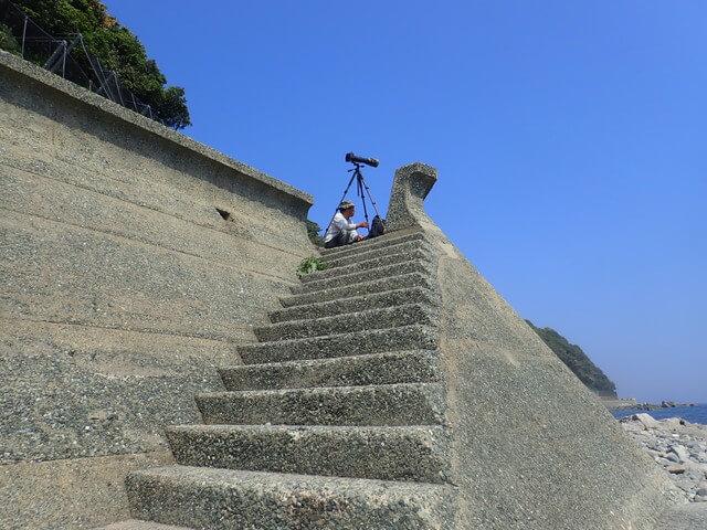 鳥 志賀島