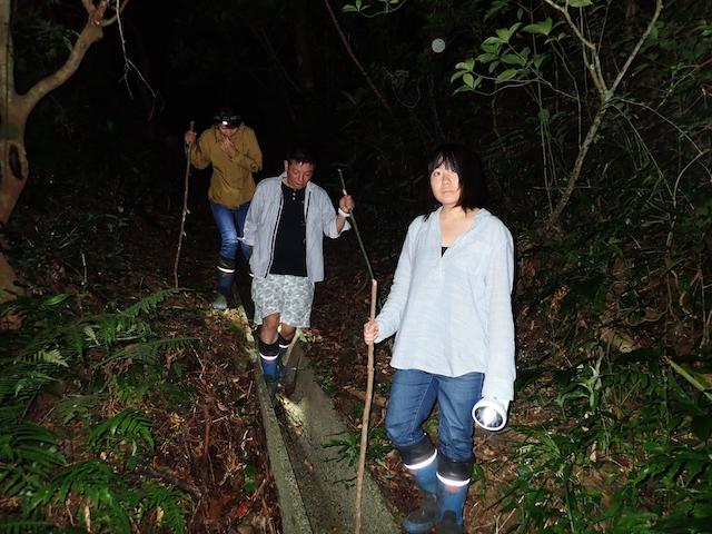 ダイブショップサンライズ 奄美大島ナイトツアー
