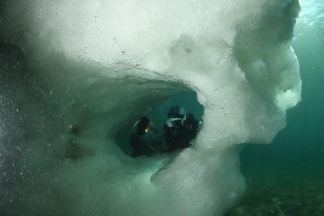 ダイブショップサンライズ 知床流氷ダイビング