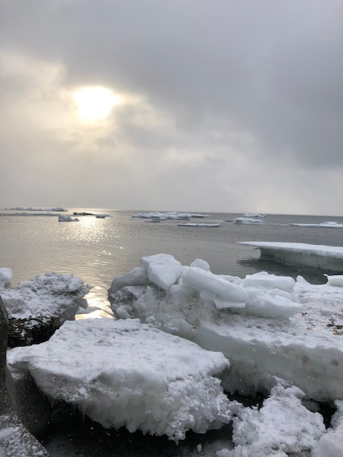 ダイブショップサンライズ 知床半島 流氷