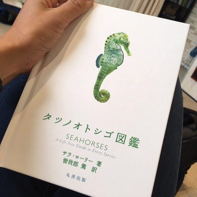 ダイブショップサンライズ タツノオトシゴ図鑑