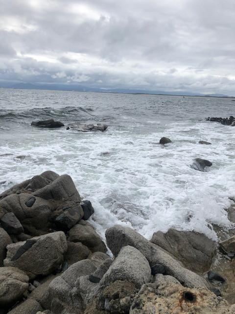 ダイブショップサンライズ 荒れた海