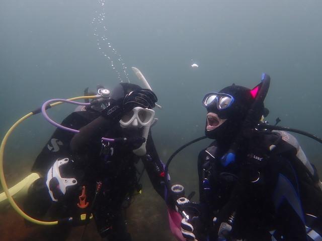 ダイブショップサンライズ 魚