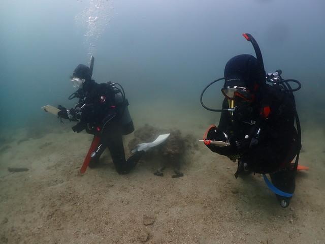 ダイブショップサンライズ 長崎でダイビング