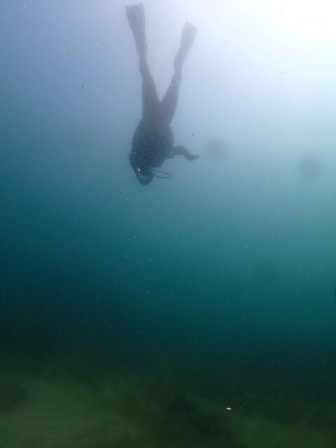 ダイブショップサンライズ 海